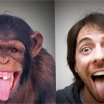 Чем отличается человек от обезьяны