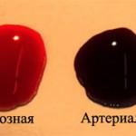 Основные отличия венозной крови от артериальной