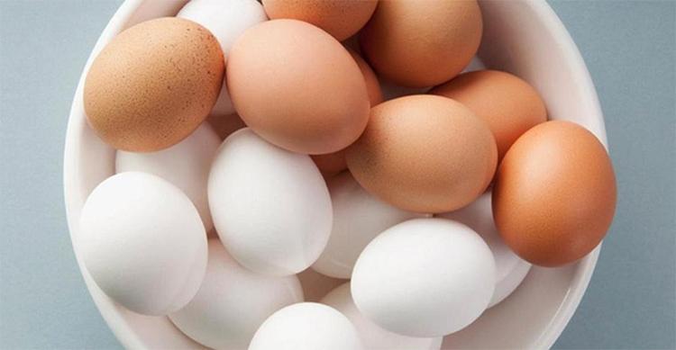 Разные виды яиц
