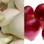 Белый и красный лук: отличия и полезные свойства