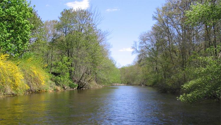 Крупная река