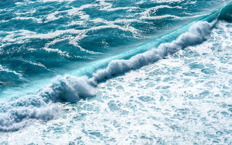 Соленая вода океана