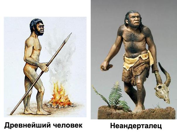 Различия древнейшего человека и неандертальцев