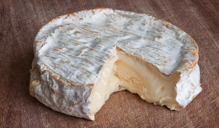 Новый мягкий сыр