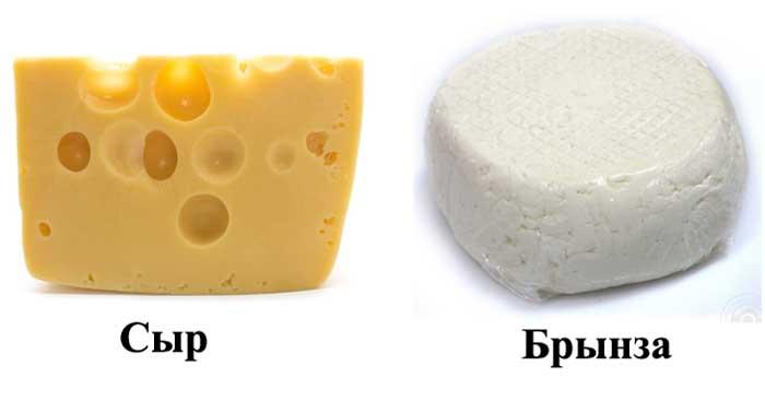 Сыр и брынза