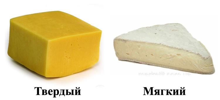 Твердый и мягкий сыр