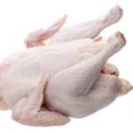 Чем отличается мясо индейки от курицы: особенности и отличия