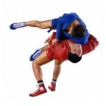 Чем отличается спортивное самбо от боевого: особенности и отличия