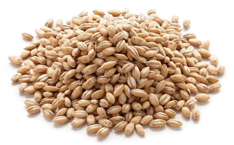 Семена ячменя