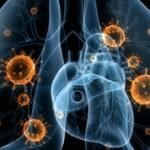 Пневмония и бронхит: особенности и чем они отличаются