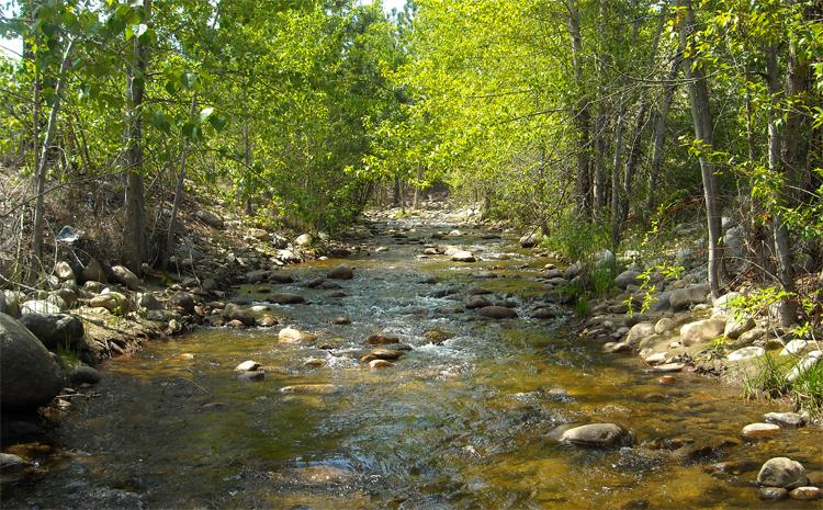 Большой ручей