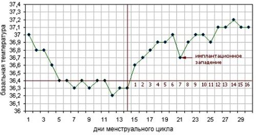 Базальная температура у девушек