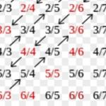 Рациональное и иррациональное число: описание и чем они отличаются?