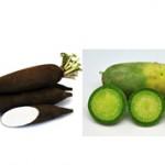 Черная и зеленая редька: чем они отличаются и что общего