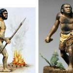 Чем отличались древние и древнейшие люди: основные отличия