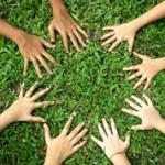 Природа и общество: понятия и чем они отличаются