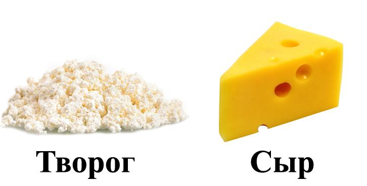 Творог и сыр