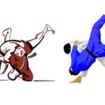 Чем отличается самбо от дзюдо — как определиться с выбором?