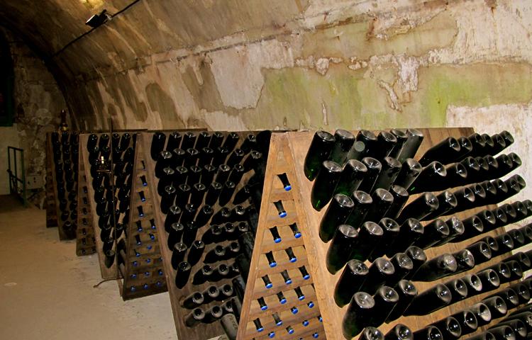 Брожение шампанского