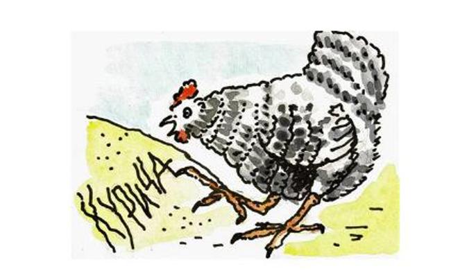 Как курица лапой - фразеологизм