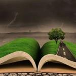 Чем отличается метафора от фразеологизма?