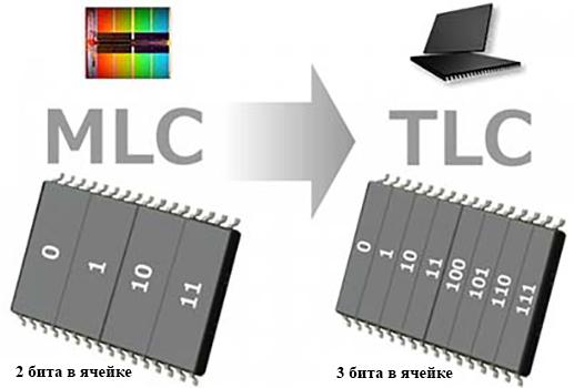 MLC и TLC