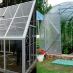 Что лучше для теплицы стекло или поликарбонат?