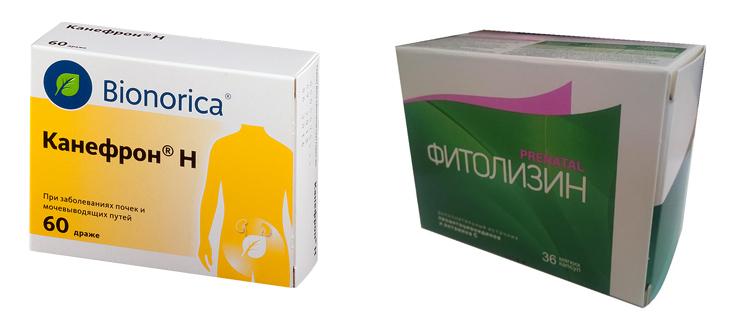 Канефрон или Фитолизин