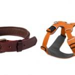 Что лучше взять для собаки ошейник или шлейку?