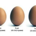 Чем отличаются яйца 1, 2 и 3 категории?