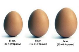 eggs99