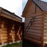 Из чего лучше строить баню из осины или сосны?