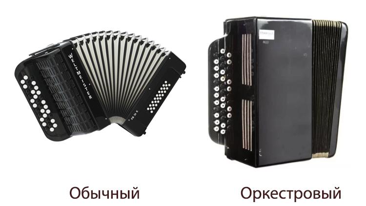 Обычный и оркестровый баяны
