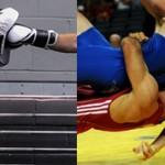 Какой вид спорта лучше выбрать бокс или борьбу?