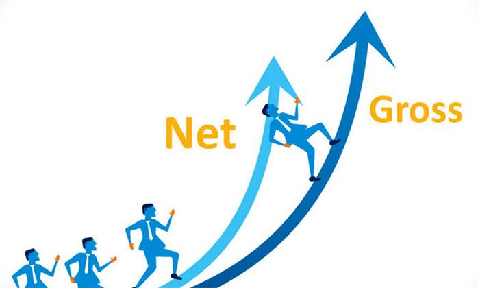 Gross и Net
