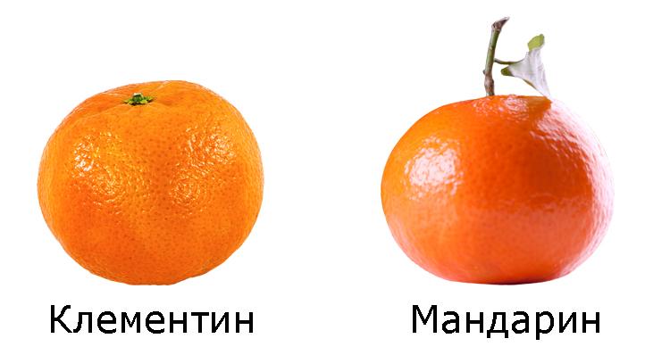 Клементин и мандаринин