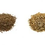 Чем отличается тмин и зиры?