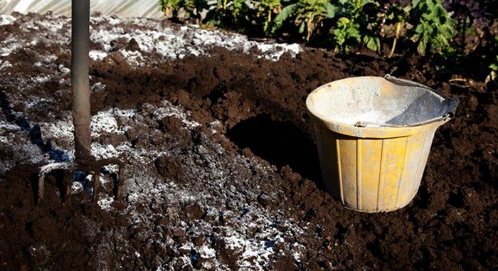 Известь для почвы
