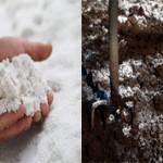 Что лучше для почвы доломитовая мука или известь?