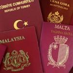 Разница между видом на жительство и гражданством