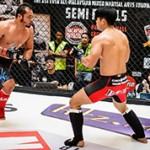 Чем лучше заниматься тайским боксом или MMA?