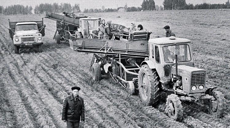 Совхоз СССР