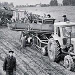 В чем разница между колхозом и совхозом?