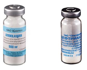 Амикацин и Цефтриаксон