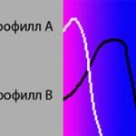 Хлорофилл a и b — чем они отличаются?