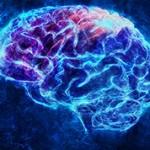 Чем отличается сознание от разума?