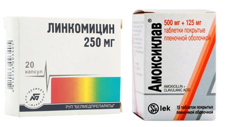 Линкомицин и Амоксиклав