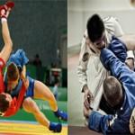 Каким боевым искусством лучше заниматься Самбо или Джиу-джитсу