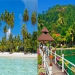 Какой остров лучше Ко-Куд или Ко-Чанг